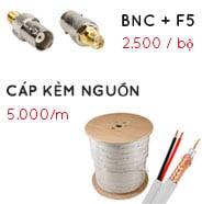 offer bnc 1
